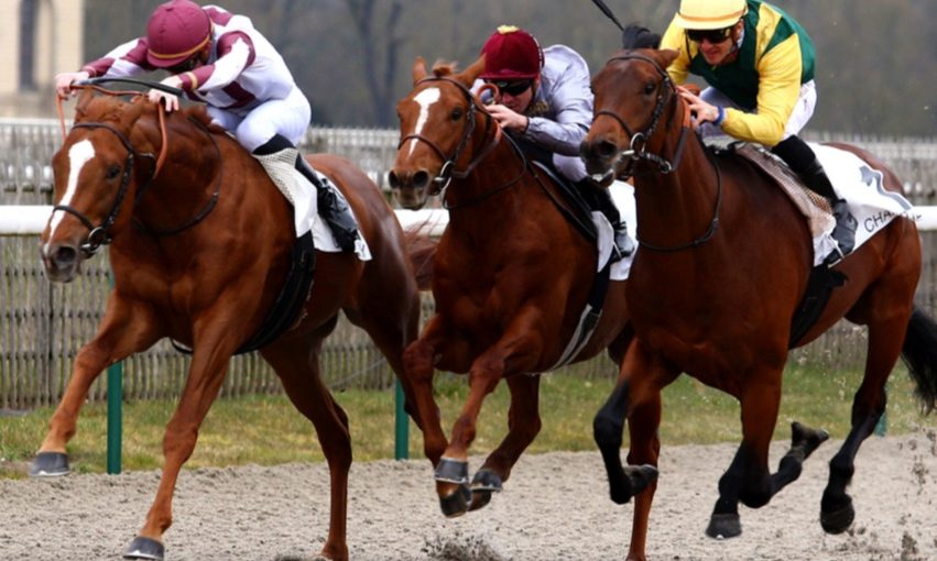 Easy one for Al Malhouf: Another winner purchased by Gerard Larrieu