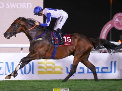 THE BLUE EYE wins H.H The Amir Trophy (Gr1)