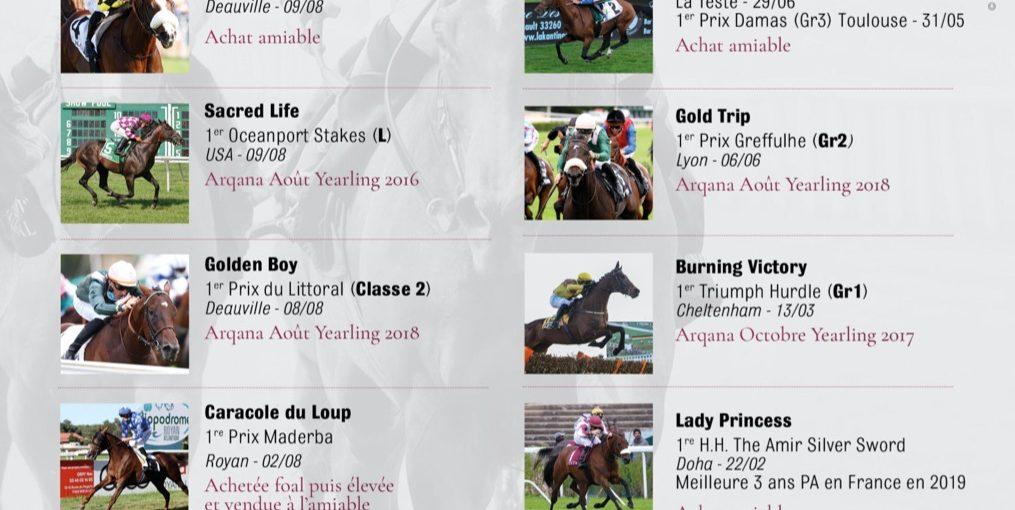 Les chevaux achetés par Chantilly Bloodstock & Gérard Larrieu