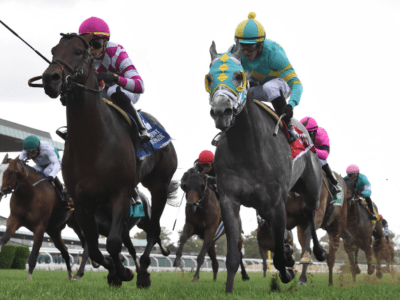 Sacred Life scores in the Gr.3 Knickerbocker Stakes at Belmont Park